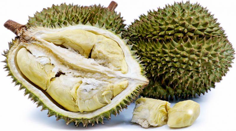 Get The Best Durian Delivery Singapore Via Online Stores